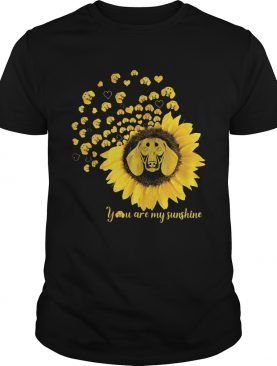 You are my sunshine sunflower dachshund shirt