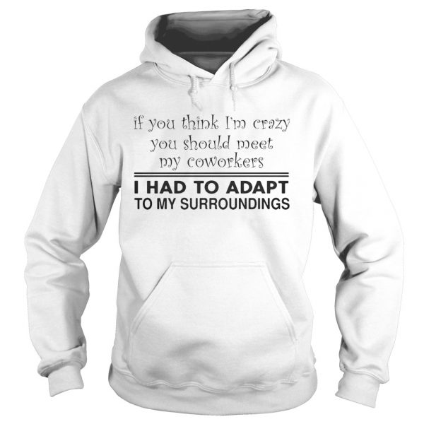 If you think Im crazy you should meet my coworkers I had to adapt  Hoodie