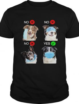 Border Collie Dogs Right Way To Wear Mask shirt