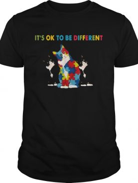 Cat Autism Its Ok To Be Different shirt