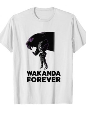 Chadwick Boseman Of Marvel Thank You For The Memories shirt