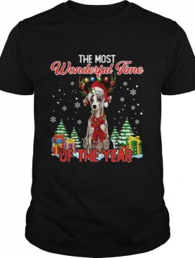 Whippet The Most Wonderful Time Of The Year Ugly Christmas shirt
